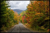 Messer Pond Road and mountain framed by trees in autumn foliage. Katahdin Woods and Waters National Monument, Maine, USA ( color)