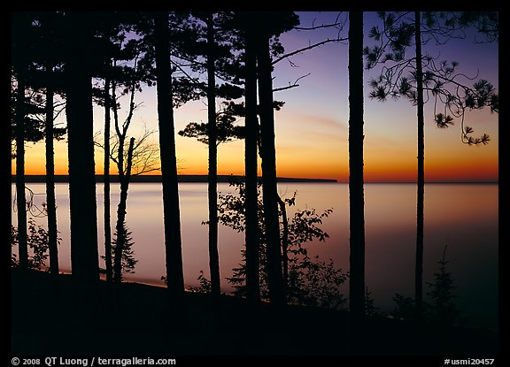 Trees and sunset, Lake Superior. USA (color)