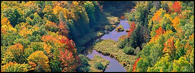 Forest in fall color and river from above. Upper Michigan Peninsula, USA (Panoramic color)