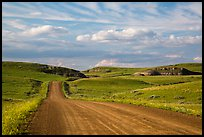 Gravel road, rolling hills and badlands. North Dakota, USA ( color)
