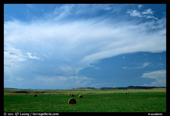 Hay rolls and storm cloud. North Dakota, USA (color)