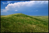 Grassy hills. North Dakota, USA (color)
