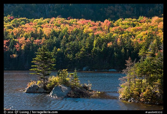 Islet on Beaver Pond in autumn, White Mountain National Forest. New Hampshire, USA (color)