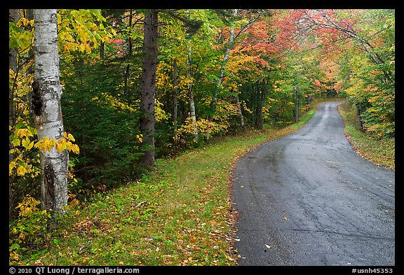 Rural road in autumn, White Mountain National Forest. New Hampshire, USA (color)