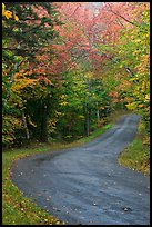 Rural road in the fall, White Mountain National Forest. New Hampshire, USA ( color)