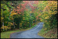 Country road in autumn, White Mountain National Forest. New Hampshire, USA ( color)