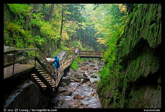 Rainy day at the Flume, Franconia Notch State Park. New Hampshire, USA (color)