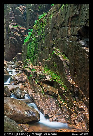 Flume brook at the base of granite and basalt walls, Franconia Notch State Park. New Hampshire, USA (color)