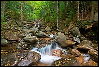 Creek in autumn, Franconia Notch State Park. New Hampshire, USA (color)