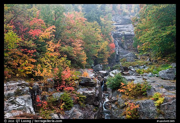 Cascading waterfall and autumn colors, Crawford Notch State Park. New Hampshire, USA (color)