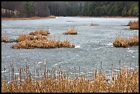 Frozen pond. Walpole, New Hampshire, USA ( color)