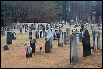 Old Slate headstones. Walpole, New Hampshire, USA (color)