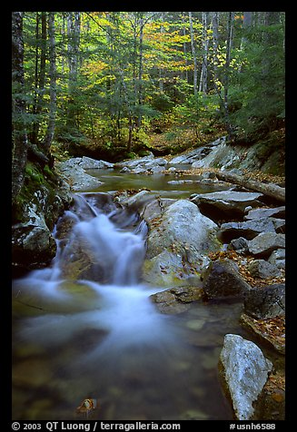 Stream in fall, Franconia Notch State Park. New Hampshire, USA (color)