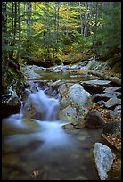 Stream in fall, Franconia Notch State Park. New Hampshire, USA ( color)