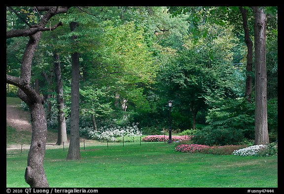 Lawn, trees, and flowers, Central Park. NYC, New York, USA (color)
