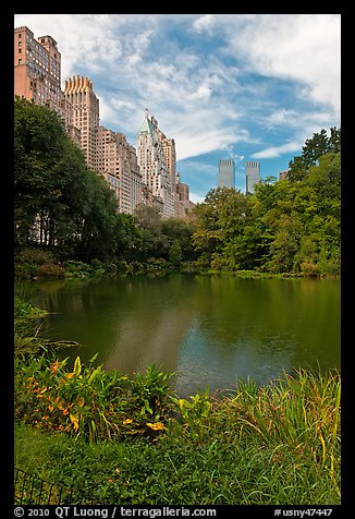 Central Park pond and nearby buildings. NYC, New York, USA (color)