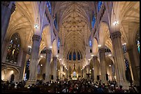 Interior of St Patricks Cathedral. NYC, New York, USA ( color)