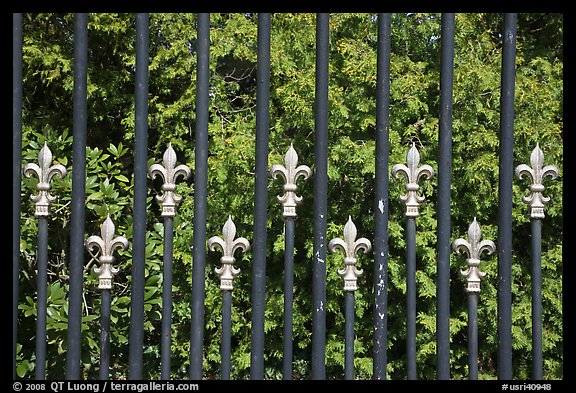 Fence with the French Fleur de Lys royalty emblem. Newport, Rhode Island, USA (color)