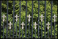 Fence with the French Fleur de Lys royalty emblem. Newport, Rhode Island, USA ( color)