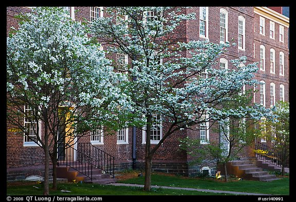 Dogwoods in bloom and University Hall at dusk, Brown University. Providence, Rhode Island, USA (color)