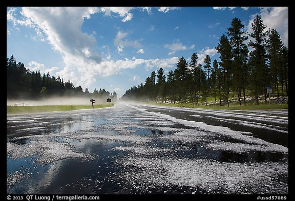 Highway with hail, Black Hills National Forest. Black Hills, South Dakota, USA (color)