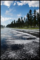 Highway after hailstorm, Black Hills National Forest. Black Hills, South Dakota, USA (color)