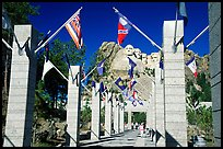 Alley of the Flags, with flags from each of the 50 US states, Mt Rushmore National Memorial. South Dakota, USA (color)