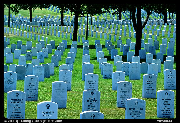 Rows of gravestones, Black Hills National Cemetery. Black Hills, South Dakota, USA (color)