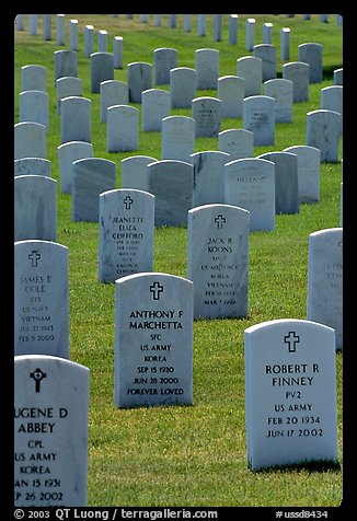 Rows of tombs, Black Hills National Cemetery. Black Hills, South Dakota, USA (color)
