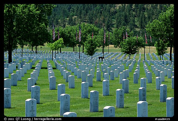 Black Hills National Cemetery. Black Hills, South Dakota, USA (color)