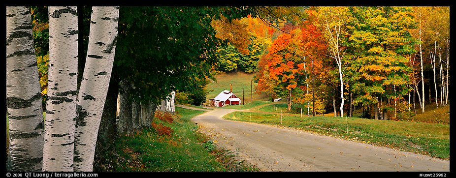 Pastoral landscape in autumn with road. Vermont, New England, USA (color)