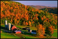 Farm surrounded by hills in fall foliage. Vermont, New England, USA (color)