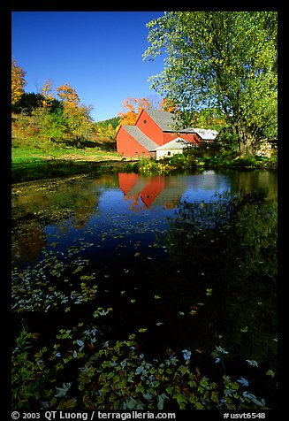 Pond and Sherbourne Farm in Hewettville. Vermont, New England, USA (color)