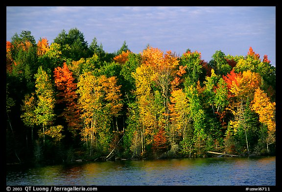 Trees in fall colors bordering a lake. Wisconsin, USA (color)