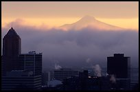 High rise buildings and Mt Hood at sunrise. Portland, Oregon, USA (color)