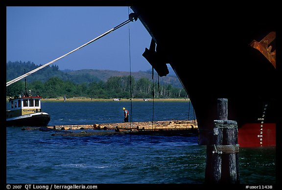 Timber, tugboat, and cargo boat bow. Oregon, USA (color)