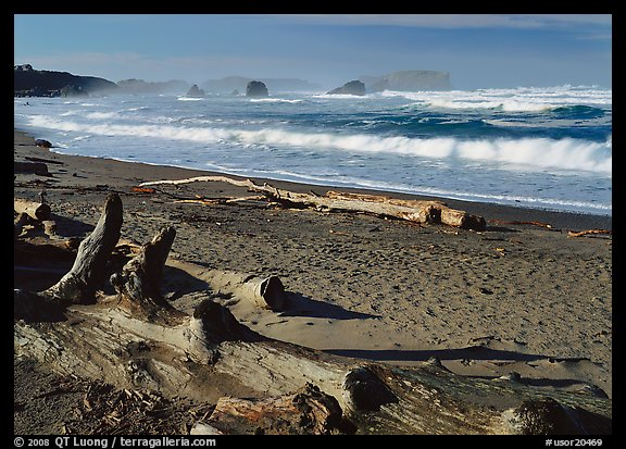 Logs on beach and surf near Bandon. USA (color)