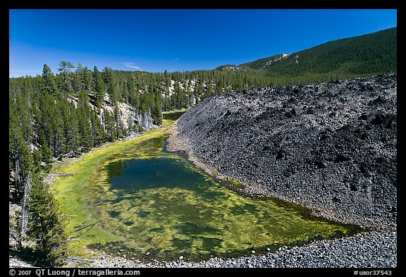 Pond at the edge of lava flow. Newberry Volcanic National Monument, Oregon, USA (color)