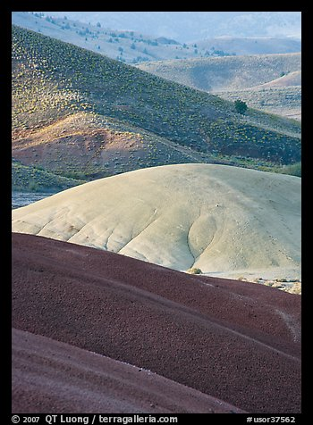 Weathered ash hummocks and sagebrush-covered slopes. John Day Fossils Bed National Monument, Oregon, USA