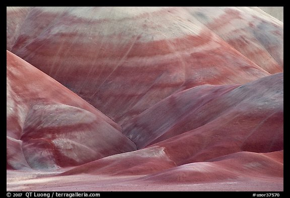 Colorful claystone hills. John Day Fossils Bed National Monument, Oregon, USA (color)