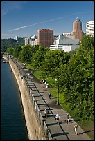 People exercising at park on Williamette River waterfront, skyline. Portland, Oregon, USA (color)
