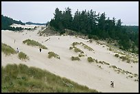 Dunes and hikers, Oregon Dunes National Recreation Area. Oregon, USA ( color)