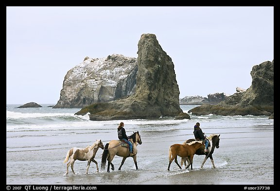 Women horse-riding on beach. Bandon, Oregon, USA