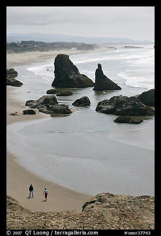 Beach and seastacks at Face Rock. Bandon, Oregon, USA (color)