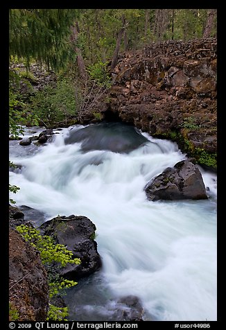 Water flowing from under basalt tube. Oregon, USA (color)