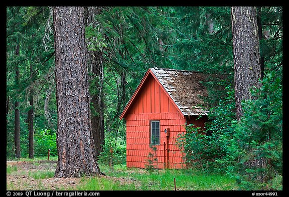 Union Creek red cabin in forest. Oregon, USA (color)