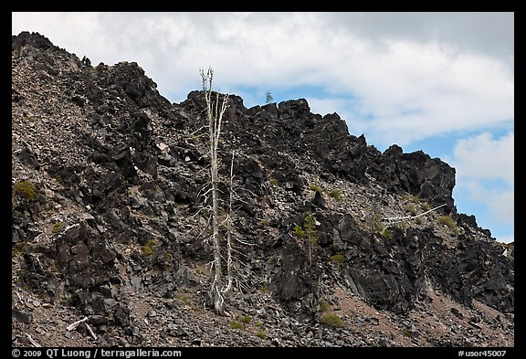 Lava outcrop, Deschutes National Forest. Oregon, USA (color)