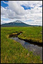 Stream, meadow, and South Sister, Deschutes National Forest. Oregon, USA ( color)