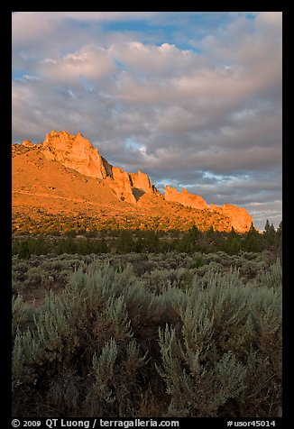 Sagebrush and ridge at sunset. Smith Rock State Park, Oregon, USA (color)