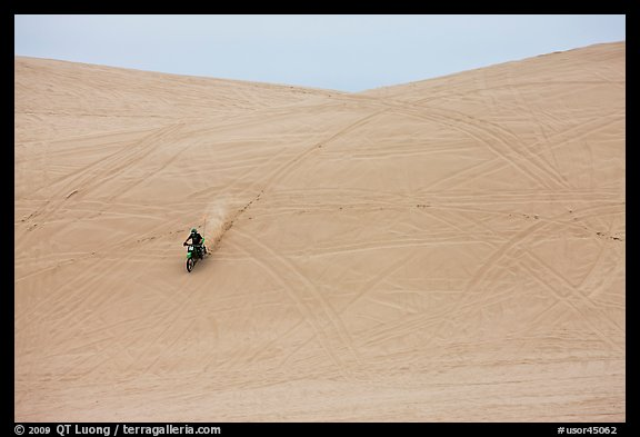 Motorcyle down dune, Oregon Dunes National Recreation Area. Oregon, USA (color)